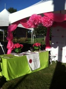 race for the cure 3